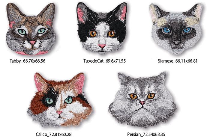 Cat Tales Designs